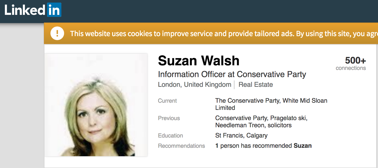 Suzan Walsh Conservative Party LinkedIn