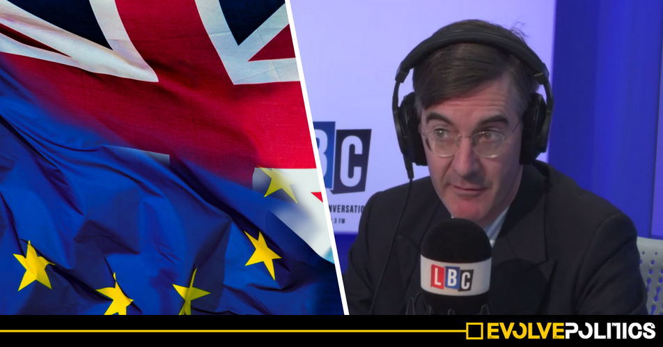 WATCH: Knowledgeable EU van driver utterly destroys Jacob Rees-Mogg's Brexit bluster with firsthand experience [VIDEO]