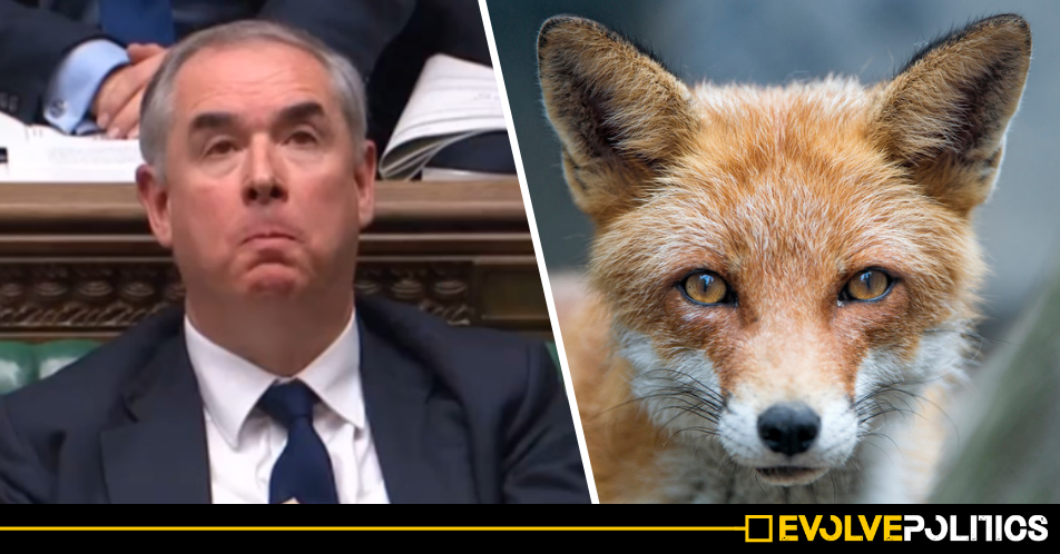 The Tories' Chief Legal Advisor Geoffrey Cox has been accused of hosting an illegal fox hunt