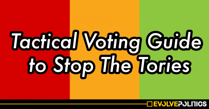 General Election 2019: Tactical Voting Constituency Guide to Stop The Tories